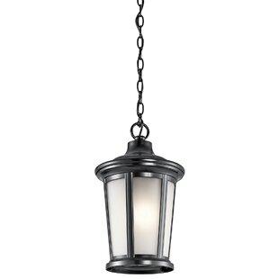 Darby Home Co Clarington 1-Light Lantern Pendant