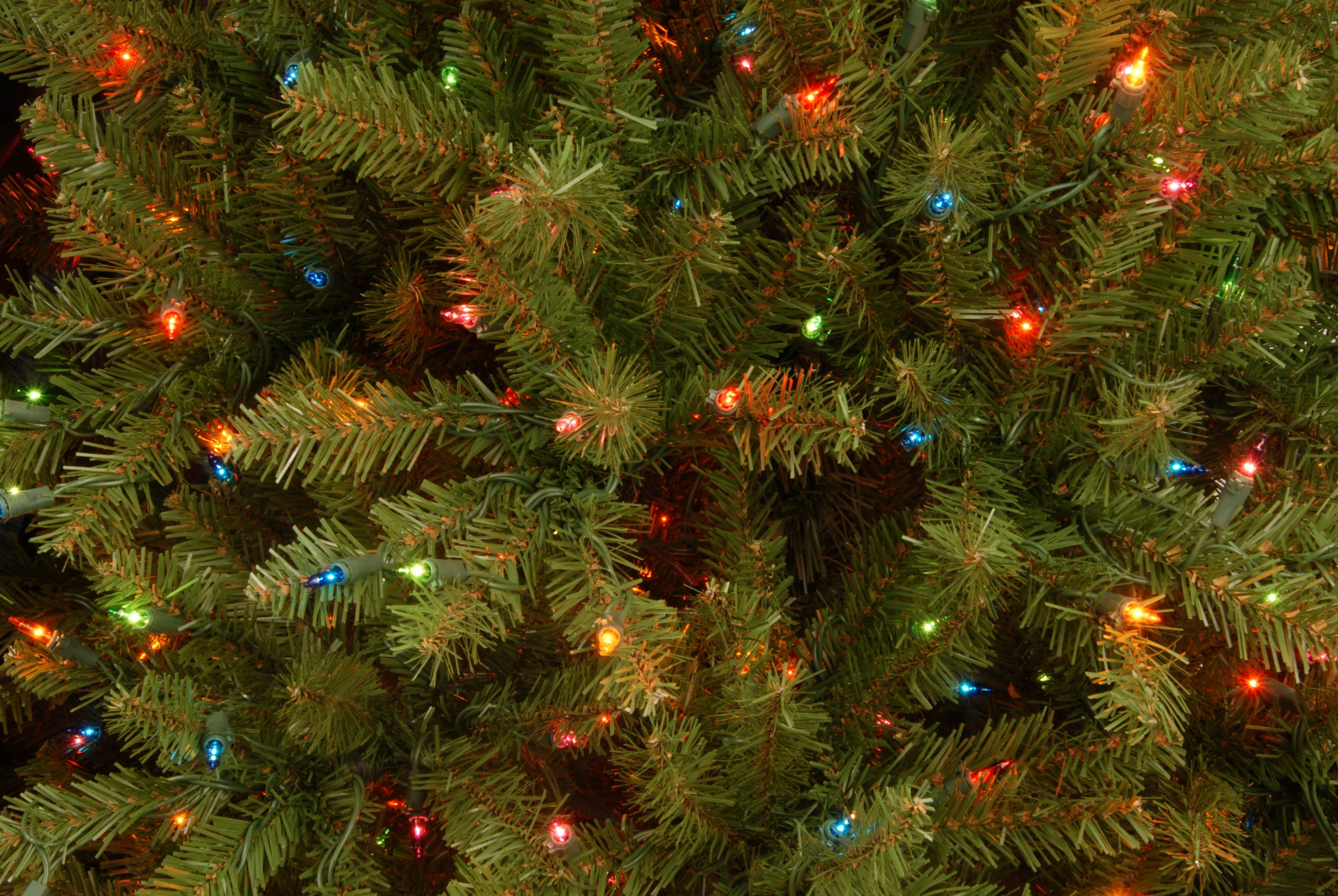 Three Posts Hinged Green Fir Artificial Christmas Tree with Multi Colored Lights & Reviews | Wayfair