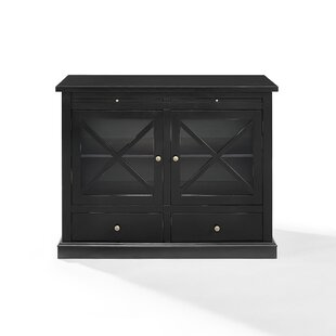 Saito 2 Door Accent Cabinet by Charlton Home