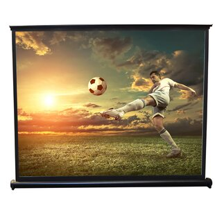 White 50 Manual Projection Screen by Pyle
