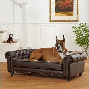 Pet Furniture | Joss & Main