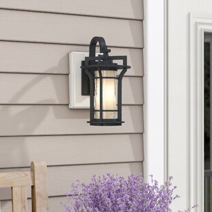 Espitia 1-Light Outdoor Wall Lantern by Millwood Pines