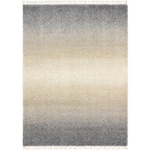 Find for Fan Gray Area Rug By George Oliver