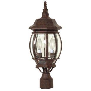 Lamp post lights youll love wayfair lamp post lights workwithnaturefo