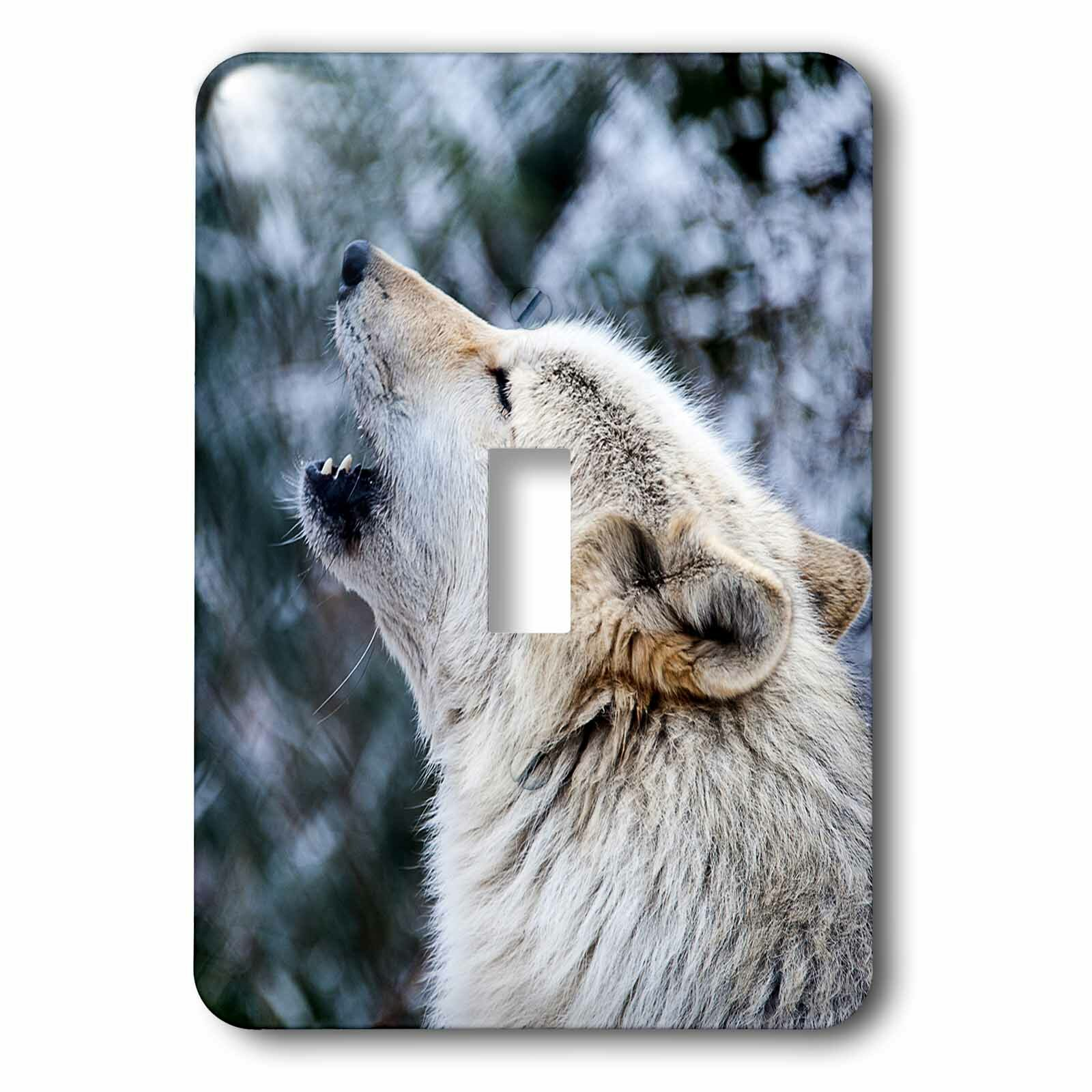 3drose Wolf Howling 1 Gang Toggle Light Switch Wall Plate Wayfair
