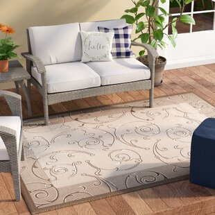 Unique Natural/Brown Indoor/Outdoor Area Rug