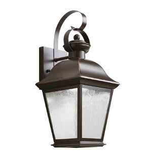 Darrah 1-Light Outdoor Wall Lantern