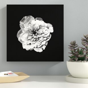 Black and white flower canvas wayfair white flower on black background photographic print on canvas mightylinksfo