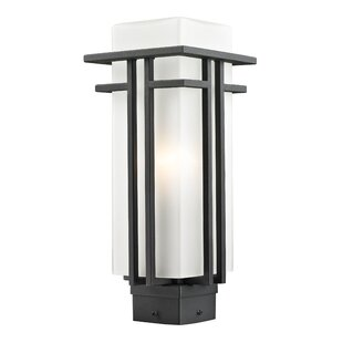 Weitzel Outdoor 1-Light Lantern Head by Winston Porter Herry Up