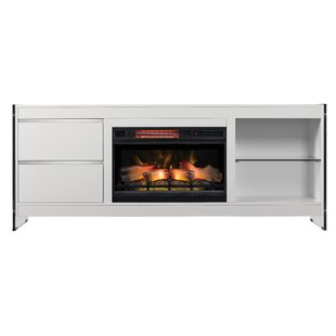 Ameriwood Home Fireplace Wayfair