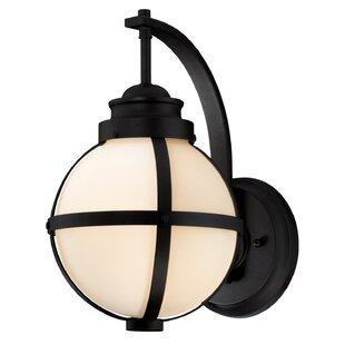 Nester 1-Light Outdoor Wall Lantern