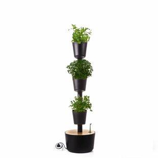 Plant Pot By Symple Stuff