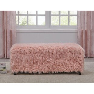 Free Shipping Rocky Upholstered Storage Bench
