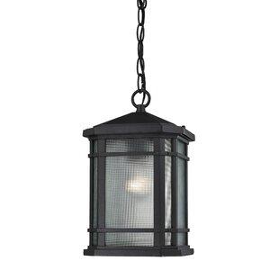 Charlton Home Colyt 1-Light Outdoor Pendant
