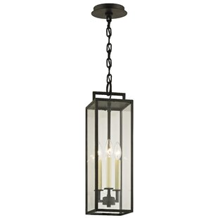 Advika 3-Light Outdoor Hanging Lantern By Darby Home Co Outdoor Lighting