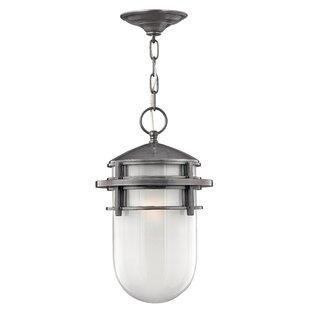 Breakwater Bay Warriner 1-Light Outdoor Hanging Lantern