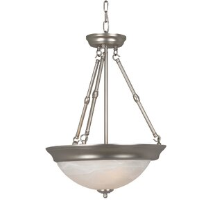 Charlton Home Argenziano 3-Light Bowl Pendant