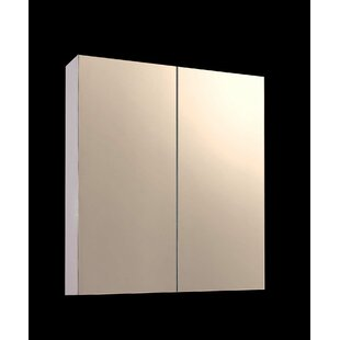 Tyrone 24 x 24 Surface Mount Medicine Cabinet by Ebern Designs