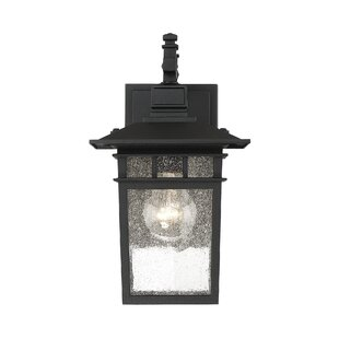 Breakwater Bay Crespo 1-Light Outdoor Wall Lantern