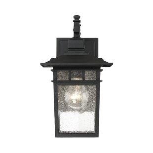Breakwater Bay Crespo 1-Light Outdoor Wall Lantern