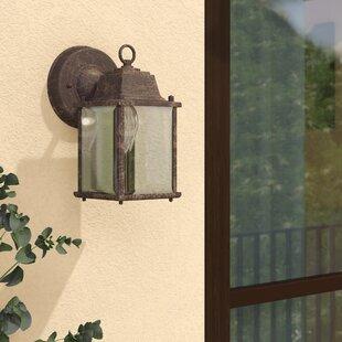 August Grove Terrazas 1-Light Outdoor Wall Lantern