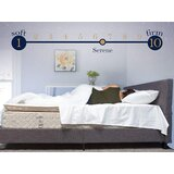 Robyn Two-Sided 14 Medium Pillow Top Hybrid Mattress by White Noise