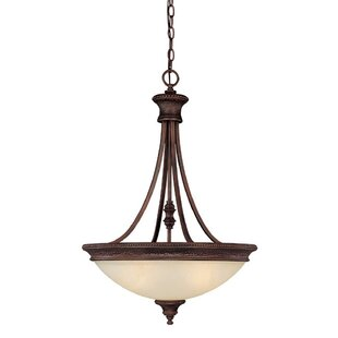 Darby Home Co Colden 3-Light Bowl Pendant