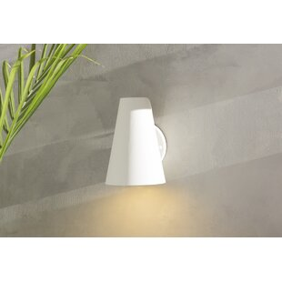 Tamiko 1-Light Outdoor Sconce