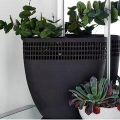 Cutout Vase Wayfair