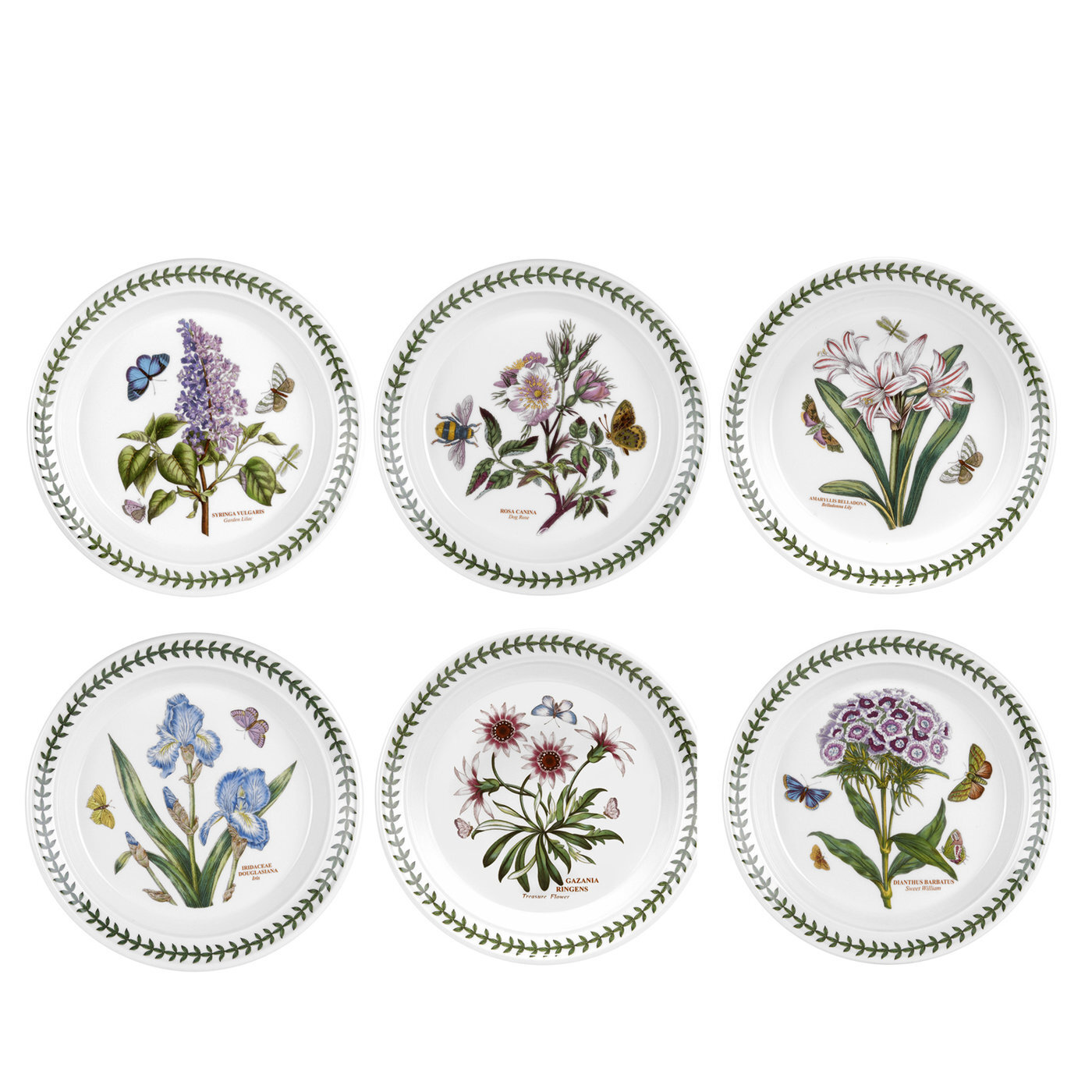 Plates Saucers From 30 Through 09 07 Wayfair