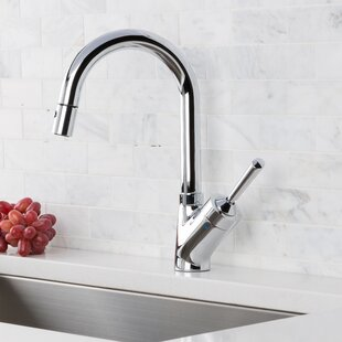 Hahn Pull Down Single Handle Kitchen Faucet