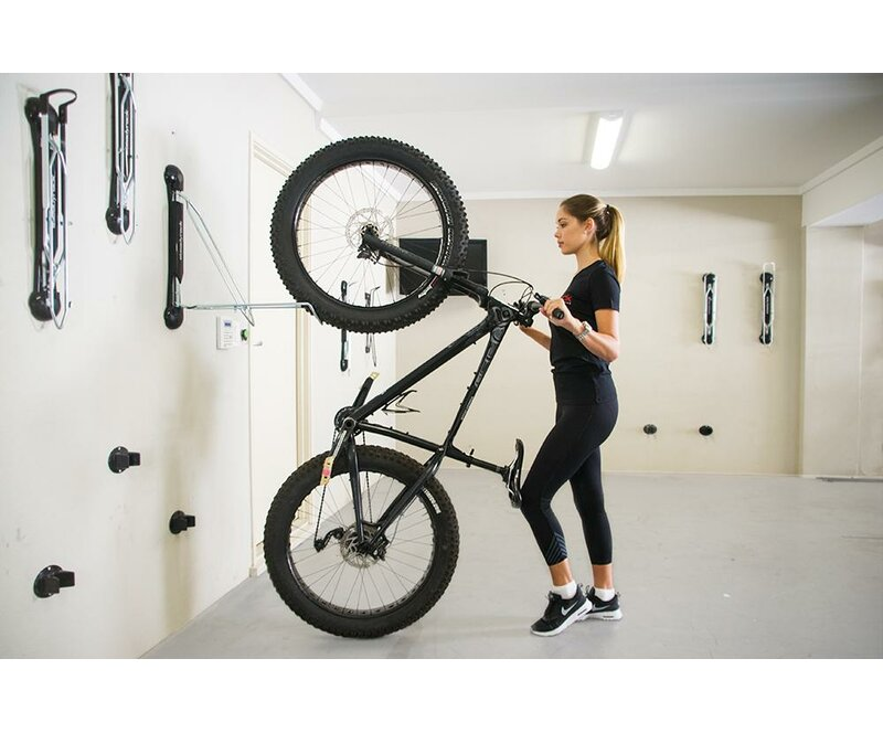 Fat Bike Storage Wall Mounted Bike Rack  sc 1 st  Wayfair & Steadyrack Bike Racks Fat Bike Storage Wall Mounted Bike Rack | Wayfair