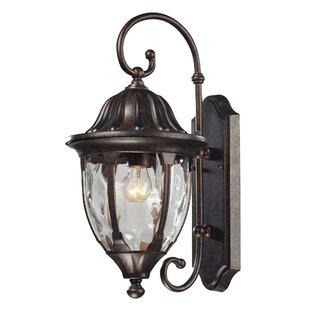 Fleur De Lis Living Amy 1-Light Outdoor Wall Lantern