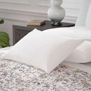 Cotton Pillow Insert (Set of 2)