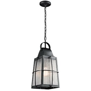 Darby Home Co Beamer 1-Light Outdoor Hanging Lantern