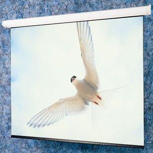 Matte White: Targa Electric Screen - HDTV 65