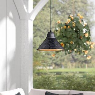 Laurel Foundry Modern Farmhouse Zuleika 1-Light Outdoor Pendant