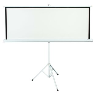 Pull up White 100 Portable Projection Screen
