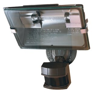 Heathco 1-Light Flood Light