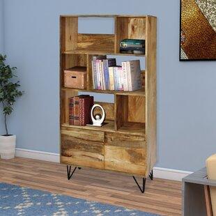 Novack Standard Bookcase By Union Rustic