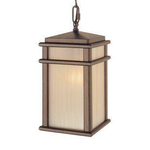 Olympia 1-Light Outdoor Hanging Lantern By Brayden Studio Outdoor Lighting