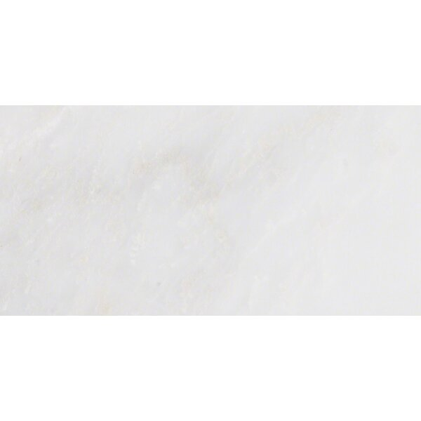 Msi Arabescato Carrara 6 X 12 Marble Field Tile Reviews Wayfair