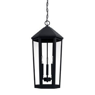 Alcott Hill Drew 3-Light Outdoor Hanging Lantern