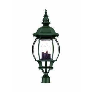 Reva Outdoor 4-Light Lantern Head by Fleur De Lis Living