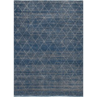 Duckworth Dark Blue Light Gray Area Rug