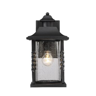 Best Reviews Treadway 1-Light Outdoor Wall Lantern By Darby Home Co