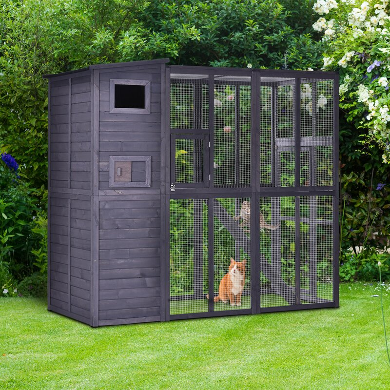 Pawhut Large Wooden Outdoor Cat House With Large Run For Play Catio For Lounging And A Condo Area For Sleeping Living Reviews Wayfair
