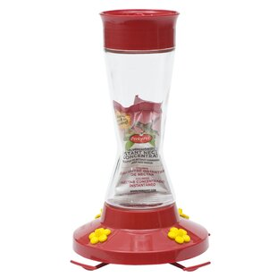 Woodstream Perky Pet Glass Hummingbird Feeder with Nectar