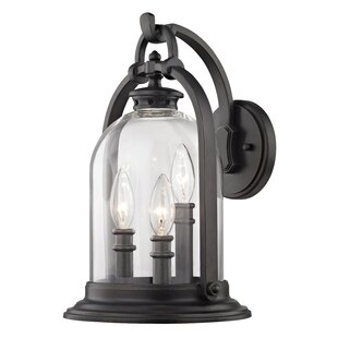 Reyna 3-Light Outdoor Wall Lantern by Darby Home Co