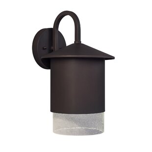 Darby Home Co Sitka 1-Light Outdoor Wall Lantern